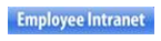 Employee Intranet Icon