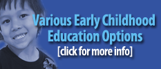 Various Early Childhood Education Options